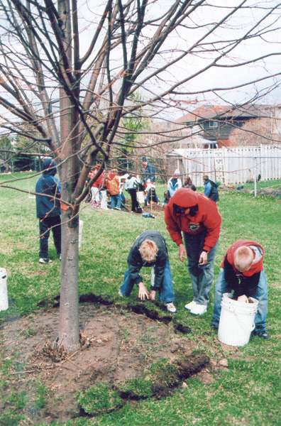 Tree Planting at Guelph Schools